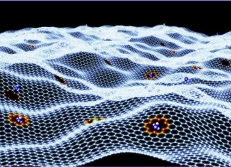 Quantum Liquid Spin