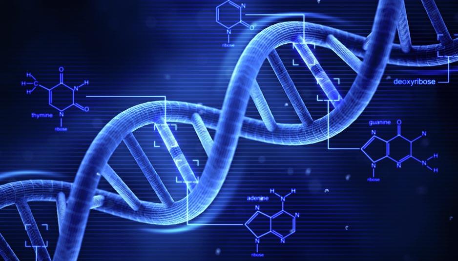DNA, Close-up Engineering, Credits: mashable.com