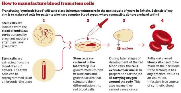 Sangue Artificiale