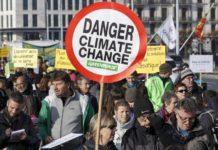 Greenpeace - Idea Ambiente (2)