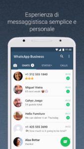 WhatsApp Business (2)