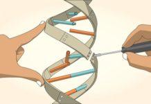 Editing DNA