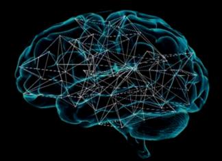 Deep learning al servizio della biologia