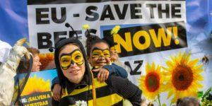Vietato utilizzo pesticidi nocivi per api