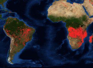 Incendi Africa