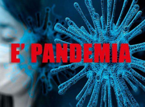 definizione pandemia