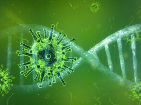 Una molecola naturale per combattere il coronavirus