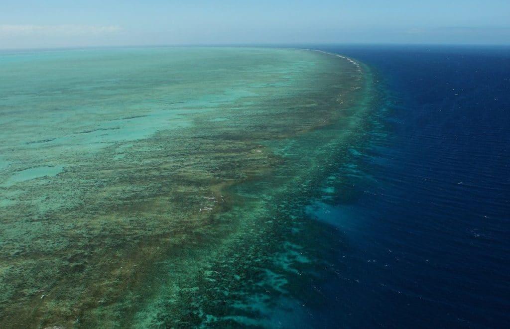 Grande Barriera Corallina australiana