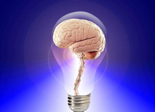 Come funziona la mente: cos'è l'intelligenza?