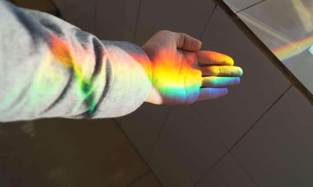 Camaleonte: un segreto fotonico dietro ai suoi colori. Credits: unsplash/Yingchih