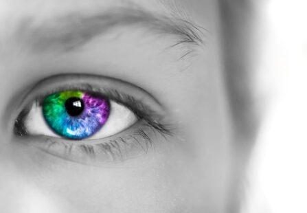 Nuovi occhiali per daltonici: i colori a disposizione di tutti!