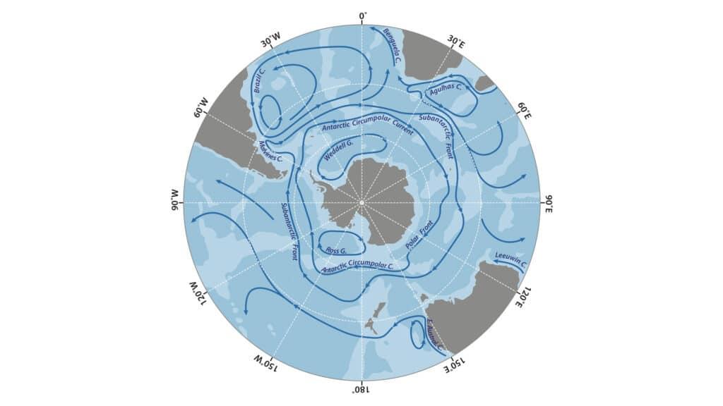 Le tipiche correnti che caratterizzano l'oceano Antartico, tra le più importanti la ACC che viaggia da ovest a est e definisce i confini del Southern Ocean. Crediti: Shutterstock.