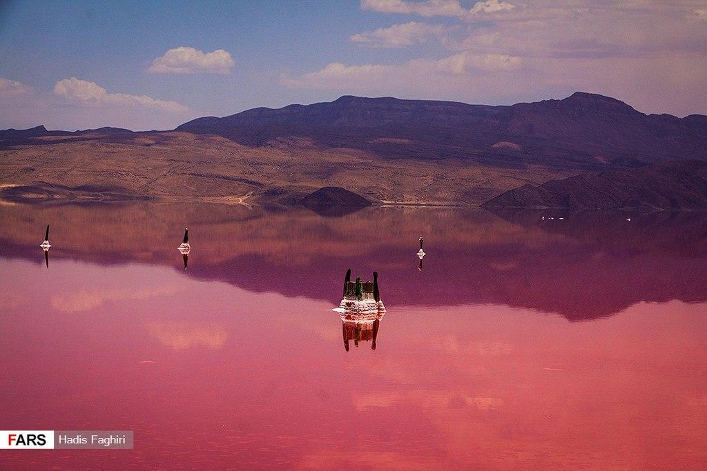 lago rosa iran